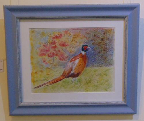 100 - Autumn Pheasant - Carol Pearce