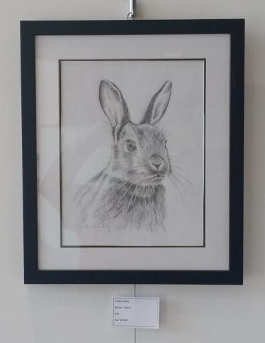 Bunny - Linda Coleby
