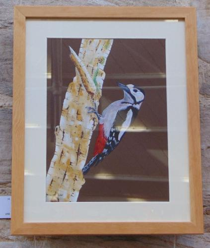 38 - Pecking Wood Pecker - Colin Farrant