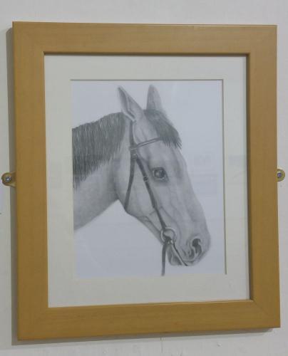 42 - Horse Study - Lisa Lamb