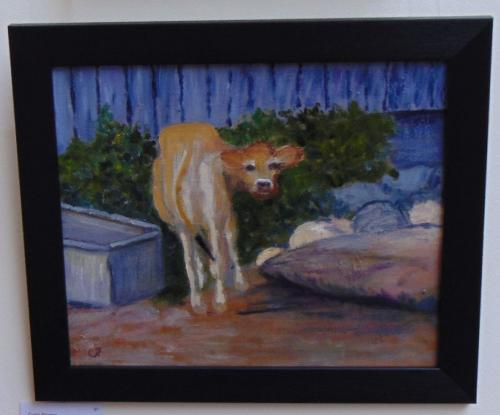 97 - Suprised Calf - Carol Pearce