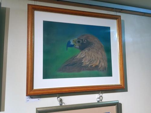 Glorious Eagle - John Brown