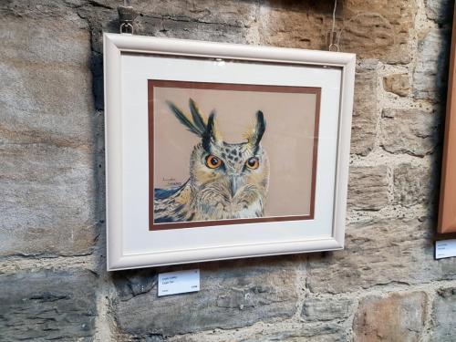 Eagle Owl - Linda Coleby