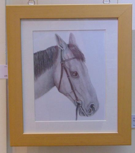 Drawing 13 - Horse Study - Lisa Lamb