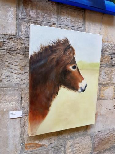 Exmoor Pony - Margaret Yole